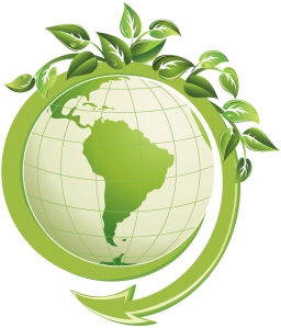 eco-friendly-solutions-our-green-initiative-898x1050
